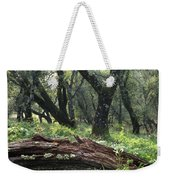 1b6338 Oak Forest On Sonoma Mountain Ca Weekender Tote Bag