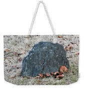 1-20-18--7452 Don't Drop The Crystal Ball Weekender Tote Bag