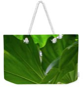 4327 - Leaves Weekender Tote Bag