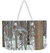 Acrobat Of The Forest Weekender Tote Bag