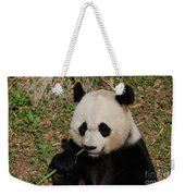 Adorable Giant Panda Eating A Green Shoot Of Bamboo Weekender Tote Bag