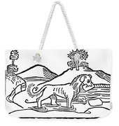 Aesop: Dog & His Shadow Weekender Tote Bag