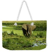 African Elephant In Swamp Weekender Tote Bag