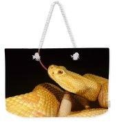 Albino Brazilian Rattlesnake Weekender Tote Bag