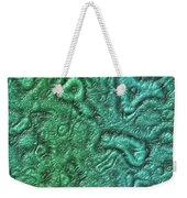 Alien Skin Weekender Tote Bag