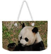 Amazing Panda Bear Holding On To Shoots Of Bamboo Weekender Tote Bag
