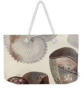 Aquatic Animals - Sea - Shells - Composition - Alien - Wall Art  - Interior Decoration  Weekender Tote Bag