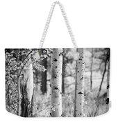 Aspen Trees In Black And White Weekender Tote Bag