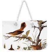 Audubon: Wren Weekender Tote Bag