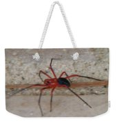 Australian Native Animals Weekender Tote Bag