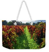Autumn Vineyard In The Morning  Weekender Tote Bag