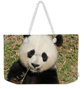 Bamboo Sticking Out Of The Mouth Of A Giant Panda Bear Weekender Tote Bag