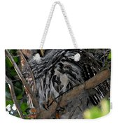 Barred Owl  Weekender Tote Bag