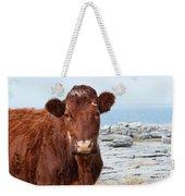 Beautiful Brown Cow On The Burren In Ireland Weekender Tote Bag