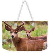 Beautiful Mule Deer Herd Weekender Tote Bag