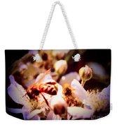 Bee On Apple Blossoms Weekender Tote Bag