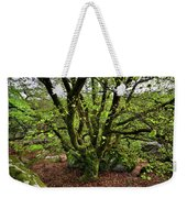 Beech Tree Weekender Tote Bag