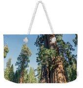 Big Tree Trail - Sequoia National Park - California Weekender Tote Bag