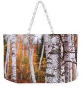 Birch Trees Fall Scenery Weekender Tote Bag
