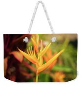 Bird Of Paradise Plant In The Garden. Weekender Tote Bag