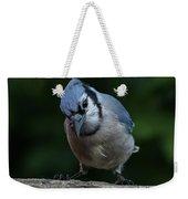Birds From Heaven - Bluejay Weekender Tote Bag