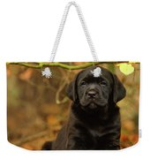 Black Labrador Retriever Puppy Weekender Tote Bag