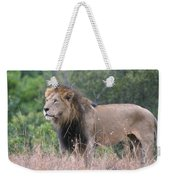 Black Maned Lion Weekender Tote Bag