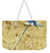Bluebird In February Weekender Tote Bag