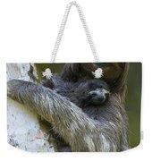 Brown-throated Three-toed Sloth Weekender Tote Bag by Suzi Eszterhas