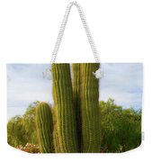 Cactus Monterey California Weekender Tote Bag