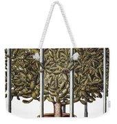 Cactus: Opuntia, 1613 Weekender Tote Bag