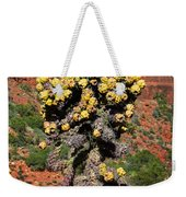 Cactus Outside The Chapel Of The Holy Cross Weekender Tote Bag