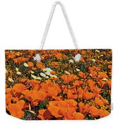 California Poppies Desert Dandelions California Weekender Tote Bag