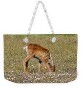 Caribou Fawn Weekender Tote Bag