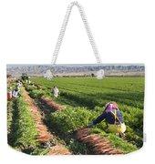Carrot Harvest Weekender Tote Bag