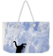 Cat Jumping From A Wall Weekender Tote Bag