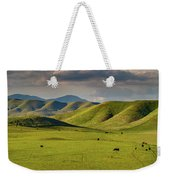 Central Valley California Weekender Tote Bag