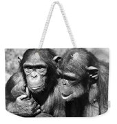 Chimpanzees Weekender Tote Bag