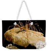 Chinese Cave House Centipede Weekender Tote Bag