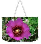 Cholla Cactus Flower Weekender Tote Bag