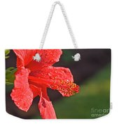 Close Up Of A Red Hibiscus Weekender Tote Bag