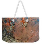 Colourful Sea Fan With Crinoid, Papua Weekender Tote Bag