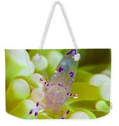 Commensal Shrimp On Green Anemone Weekender Tote Bag by Steve Jones