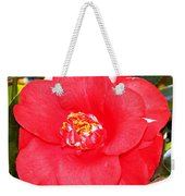 Coral Camellia At Pilgrim Place In Claremont-california  Weekender Tote Bag