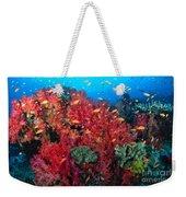 Coral Reef Scene Weekender Tote Bag