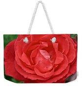 Coral Rose At Pilgrim Place In Claremont-california Weekender Tote Bag