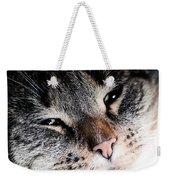 Cute Cat Close-up Portrait Weekender Tote Bag