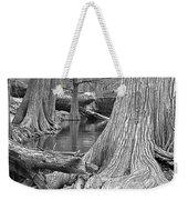 Cypress Trees I V Weekender Tote Bag
