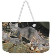 D-a0072 Fox Family On Our Mountain Weekender Tote Bag