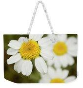 Daisies #1 Weekender Tote Bag